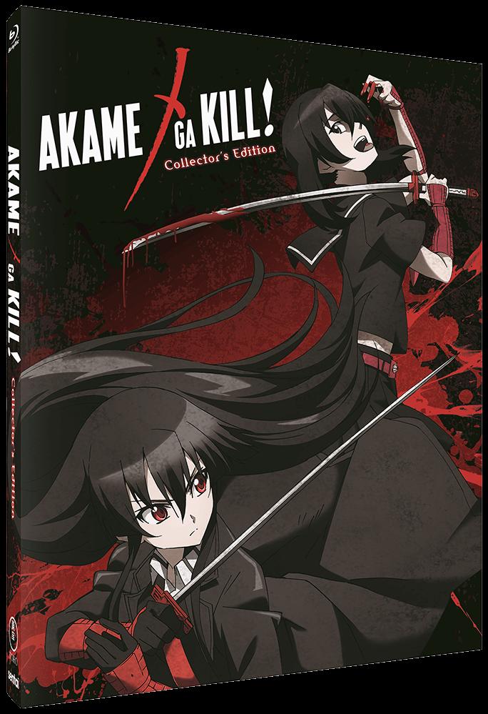 Akame ga Kill Steelbook